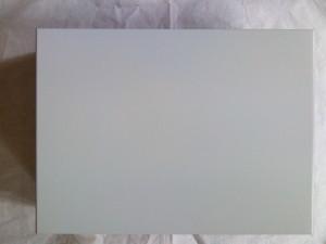 Pintura de carcasa IBM AT Modelo 5170